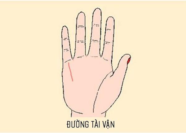 Xòe bàn tay xem bạn có sở hữu 3 đường chỉ tay đem lại cuộc sống thoải mái, không bao giờ phải lo lắng về tiền bạc hay không?-2