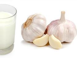 Giảm cân hiệu quả chỉ với cốc sữa tỏi mỗi ngày