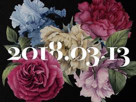 5 bông hoa 5 màu gây tò mò trên ảnh nhá hàng cho single chia tay fan của Big Bang