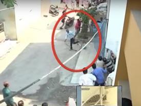 Kinh hoàng báo hoang tấn công người dân ở Ấn Độ