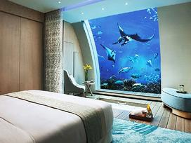 Khách sạn nơi bạn trải nghiệm 'ngủ' dưới thuỷ cung ở Singapore