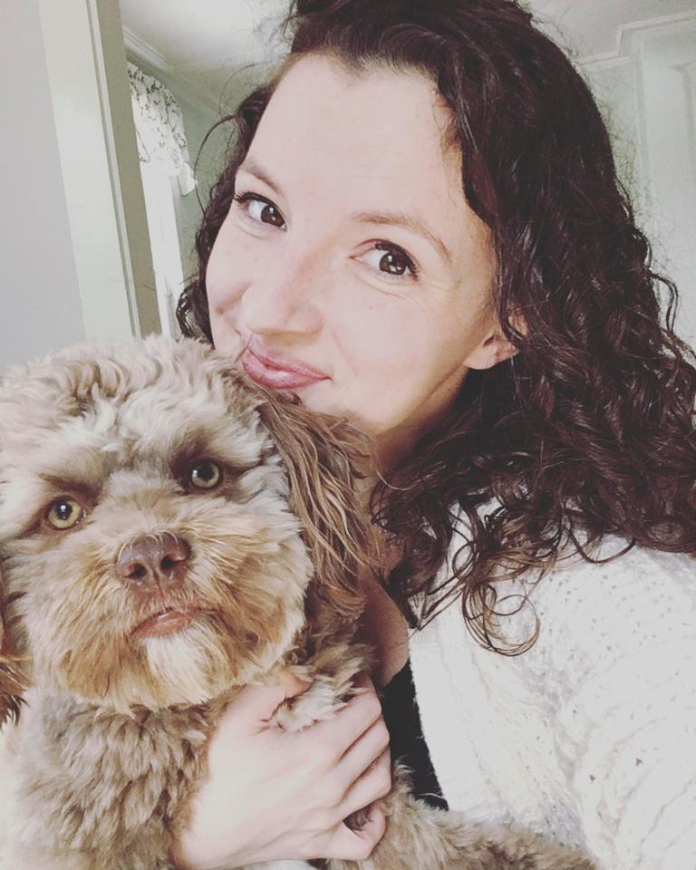 CHUYỆN LẠ: Chú chó gây sốt vì khuôn mặt giống nhiều sao nam Hollywood-2