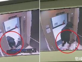 Hành hung bạn gái dã man trong thang máy, nam sinh Hàn Quốc bị bắt giữ