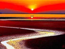 Bãi biển đỏ rực như bể máu khiến du khách không dám nhúng chân