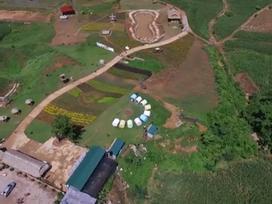 Thiên đường hoa cỏ ở Mộc Châu qua góc nhìn Flycam