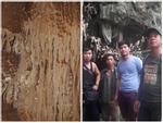 Hang động không đáy đẹp như thủy cung dưới chân núi Pha Luông