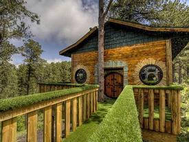 Choáng ngợp kiến trúc tuyệt đẹp của những căn nhà trên cây