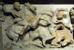 Hầm mộ của Alexander Đại đế nằm ở đâu? Nhiều cuộc khảo cổ tìm kiếm lăng mộ của Hoàng đế Hy Lạp, Alexander Đại đế đã được tiến hành nhưng giới khoa học vẫn chưa tìm được câu trả lời. Theo một số tài liệu sử ghi chép, hài cốt của ông nằm trong một chiếc quan tài bằng vàng được đưa tới Memphis, sau đó là Alexandria, Ai Cập nhưng biến mất từ đó.