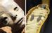 Xác chết hóa đá tự nhiên ở San Bernardo, Colombia: Ngày càng có nhiều du khách tới thị trấn San Bernardo, Colombia mỗi năm để tận mắt nhìn thấy những xác ướp tự nhiên. Gần 20 năm trước, cư dân nơi đây đã phát hiện ra một xác chết hóa đá tự nhiên mà không cần sử dụng phương pháp ướp xác nào.