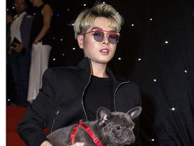 Năn nỉ mượn chó của Hòa Minzy đi thảm đỏ, Đức Phúc vẫn thẳng thừng chê chó hôi khiến anh bị ám mùi