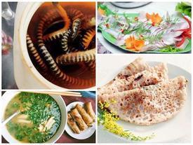 Đến Quảng Bình uống tiết 'mãng xà biển', ăn gỏi 'thủy quái', bạn đã thử chưa?