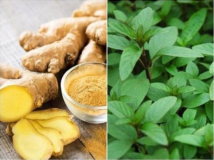 Những nguyên liệu đơn giản giúp giải bớt độc khi ăn phải thức ăn ôi thiu, thực phẩm chứa chất có hại