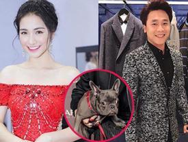Hòa Minzy lập thời gian biểu cho chó và người yêu, bạn trai nữ ca sĩ giật mình: 'Cả đời anh gắn liền với chó hả?'