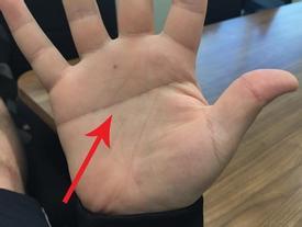 Nhìn vào lòng bàn tay mình và xem đi, nếu sở hữu đường chỉ tay như thế này, bạn đúng là 'của hiếm'