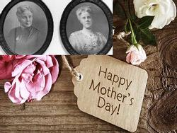 Vì sao hoa cẩm chướng được lựa chọn trở thành biểu tượng cho 'Ngày của mẹ'?
