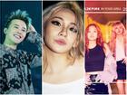 360 độ Kpop ngày 17/5: Momoland, BlackPink đồng loạt xác nhận comeback tháng 6