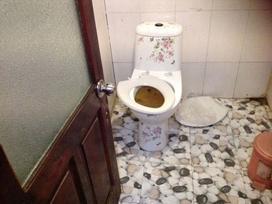 Vụ tàu du lịch 'toilet hỏng, bánh mì mốc': Chúng tôi đã tin những lời lừa dối
