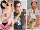 Dàn hotteen Việt minh chứng câu nói: 'Người yêu có thể không có nhưng chó mèo nhất định phải có một con'