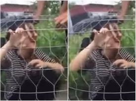 Cô gái bị bạn trai 'úp sọt' khiến cư dân mạng không nhịn được cười