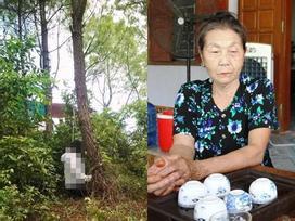 Khai quật mộ nữ kế toán tử vong bí ẩn 6 năm trước: Trăn trở của người nhà nạn nhân
