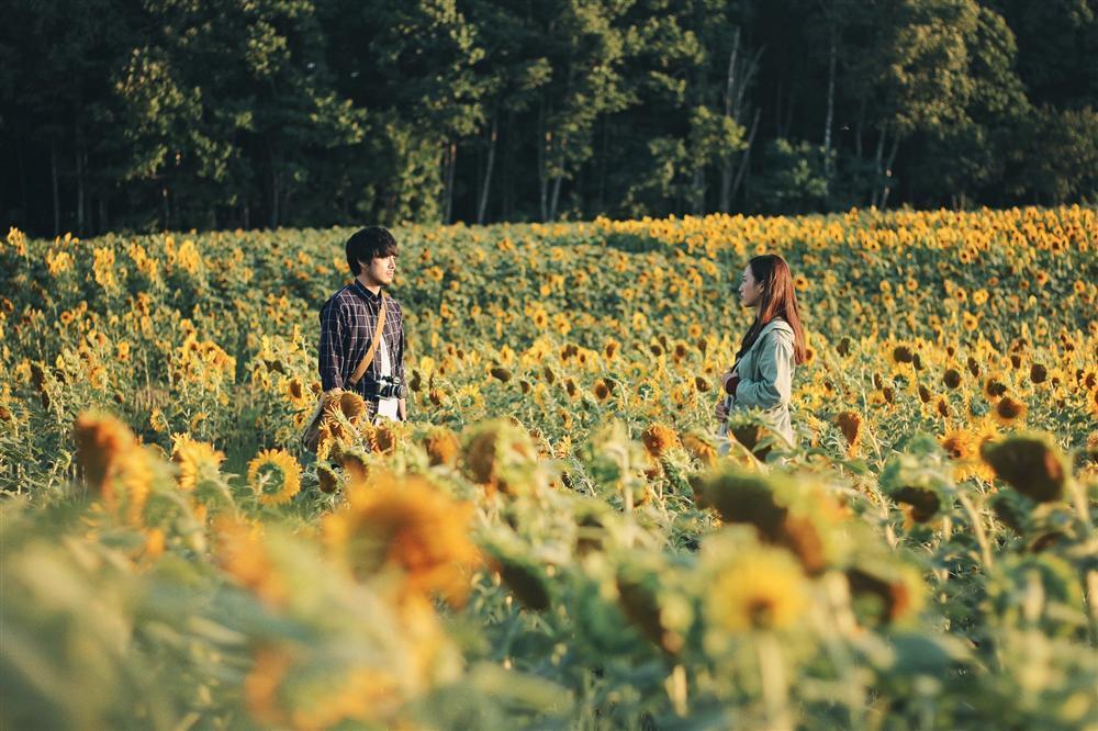 Những ngôi nhà êm đềm nép dưới rừng cây xanh mát, đền thờ nơi bố Nhật Hạ đến cầu nguyện cho con gái, cánh đồng hoa hướng dương Hokuryu rực vàng, lễ hội pháo hoa mùa hè hay ngọn núi lửa Asahidake xám buồn... đã đi vào phim rất nhẹ nhàng trong những diễn biến phù hợp. Đây là sự trên tầm so với những phim cũng quay ở nước ngoài như Quyên, Dạ cổ hoài lang hay Giấc mơ Mỹ.  Một điểm cộng nữa cho kịch bản là sự lồng ghép khéo léo các chị tiết đặc trưng văn hoá của 2 nước Việt - Nhật.  Từ ngôi đền Nhật Bản đến ngôi chùa Việt Nam. Từ món mì ramen của Nhật Bản mà Akira và Nhật Hạ dùng bữa trong một quán ăn đến món thịt kho hột vịt lộn của Việt Nam trong bữa cơm gia đình của bà chủ hiệu ảnh Tomoe.  Từ chiếc yakuta của bác Tomoe mà Nhật Hạ có dịp mặc thử đến chiếc áo dài mà cô diện trong lễ đính hôn hay giờ lên lớp. Tất cả đi vào phim một cách nhẹ nhàng, hợp lý, không hề phô diễn.