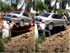 Chuyện lạ: Người đàn ông Trung Quốc chọn chôn trong ô tô thay vì quan tài truyền thống