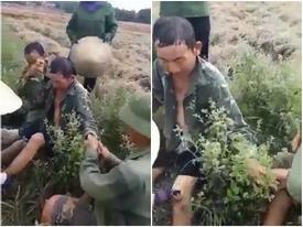 Đoạn clip người cha ngất trên cánh đồng vì làm việc quá sức khiến những đứa con vô tâm thức tỉnh