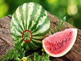 Mẹo chọn dưa hấu cực ngon, 100 quả như 1 trong mùa hè