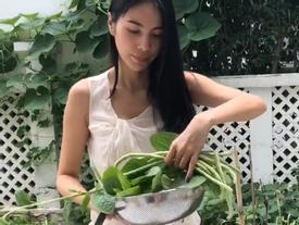 Thấy mẹ bán được 190 nghìn tiền rau sạch hái từ khu vườn trong mơ, Thủy Tiên hết lời khen: 'Vi diệu'