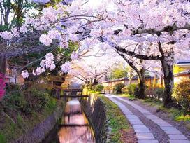 Những địa điểm mà người yêu hoa nhất định phải tới một lần trong đời