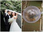 Chồng 'có tâm' nấu cho vợ: Chim đi đằng chim, cháo rời đằng cháo