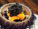Đủ món ngon từ nhum - đặc sản bổ dưỡng từ biển đảo Lý Sơn