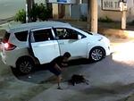 Trộm chó, thanh niên Thanh Hóa bị treo chó lên cổ-2