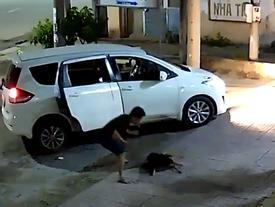 Phẫn nộ đi ô tô trộm chó trong chớp mắt