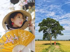 Bạn sẽ phải thốt lên 'Việt Nam đẹp quá!' khi xem qua thước phim của nàng 9X du học 20 năm