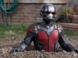 Dàn diễn viên hùng hậu trong 'Người Kiến & Chiến binh Ong' của Marvel