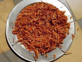 'Chảo lửa' biến Hà Nội biến thành căn bếp khổng lồ trong đợt nắng nóng đỉnh điểm