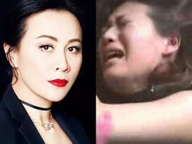 5 sao Trung Quốc từng bị cưỡng bức: Người thành triệu phú, kẻ thân tàn ma dại