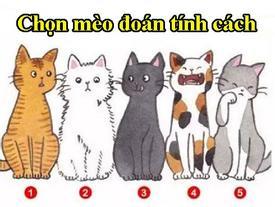 Chọn chú mèo bạn thích nhất sẽ bật mí những điều người khác đánh giá về bạn