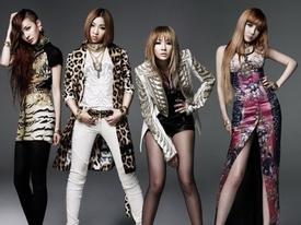 Sao cái gì cũng là BigBang, YG phát triển cũng có phần không nhỏ từ 2NE1 mà?