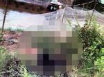 Gã đàn ông mang 20 lít xăng đốt nhà bạn gái, 2 người chết
