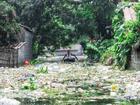 Người dân ngoại thành Hà Nội chật vật với rác sau mưa lũ