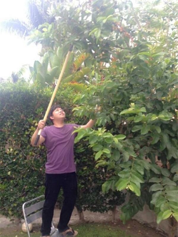 Khu vườn ngập cây trái Việt như nông dân thứ thiệt của Quang Lê ở Mỹ-5