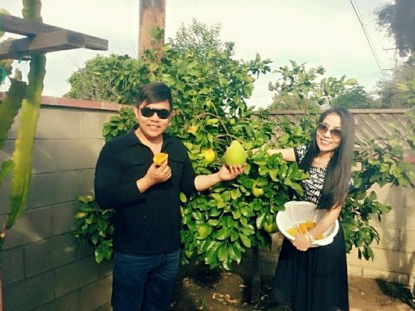 Khu vườn ngập cây trái Việt như nông dân thứ thiệt của Quang Lê ở Mỹ-6