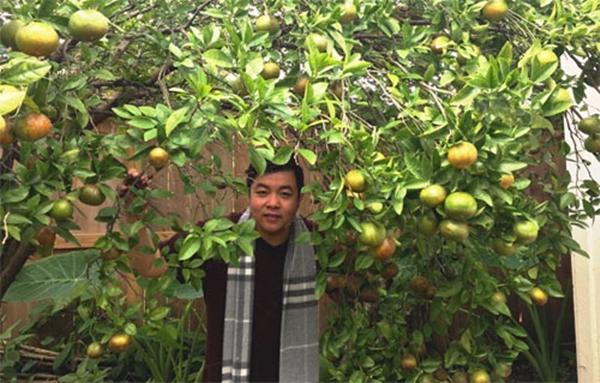 Khu vườn ngập cây trái Việt như nông dân thứ thiệt của Quang Lê ở Mỹ-7