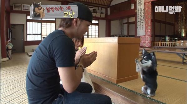 Chắp chân cầu nguyện trước tượng Phật mỗi ngày, chú chó Hàn Quốc nổi tiếng thế giới-6