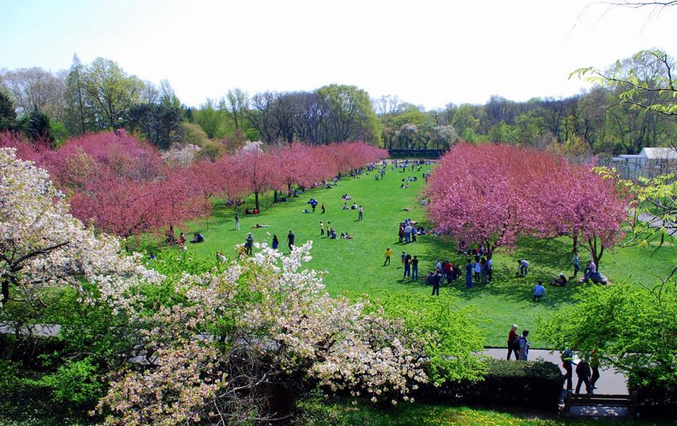 Những khu vườn bách thảo tuyệt đẹp nổi tiếng thế giới-1