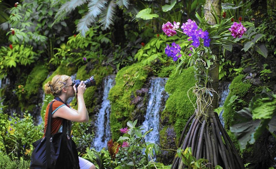 Những khu vườn bách thảo tuyệt đẹp nổi tiếng thế giới-7