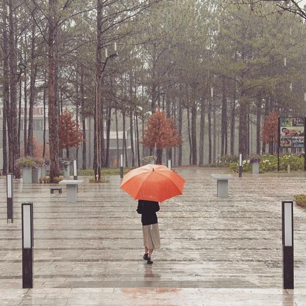 Đà Lạt mùa mưa say đắm một ngày, cả đời thương nhớ-1