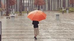 Đà Lạt mùa mưa say đắm một ngày, cả đời thương nhớ
